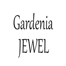 Shop Accessories at GardeniaJewel