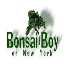 Shop Home & Garden at Bonsai Boy of New York